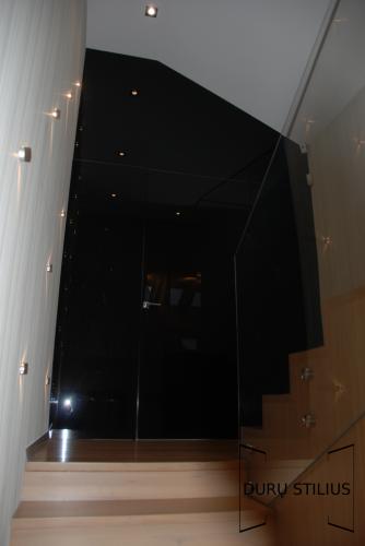 Durys - stiklas ir akrilas 55